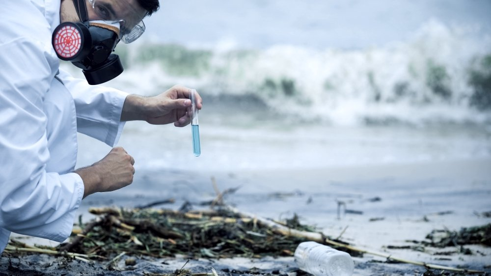 Toxicologist taking sample in nature.