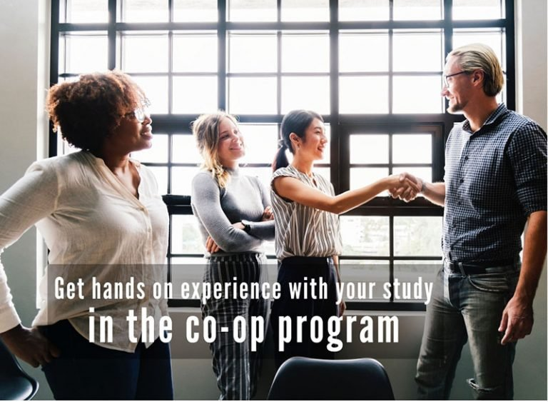 What is the co-op work program and how can I apply?