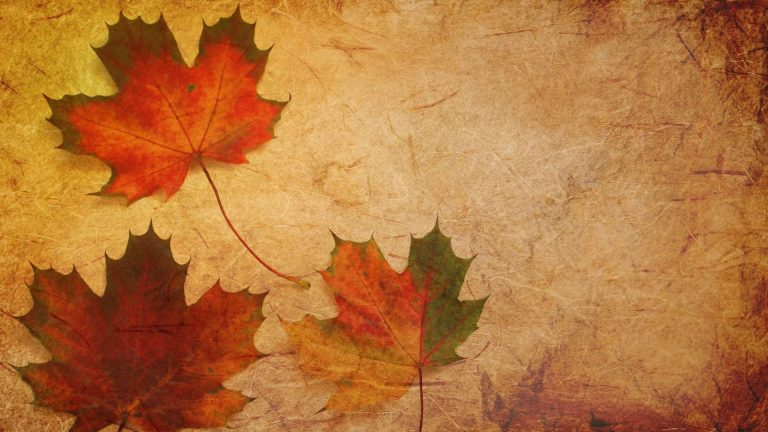 The History of the Famous Red Maple Leaf