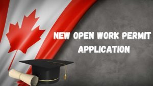 New Work Permit Application
