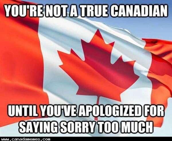 Apologizing meme with Canadian Flag